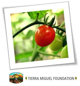 Tierra Miguel Foundation