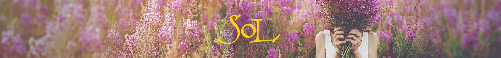 SOL_Header-field-2_0