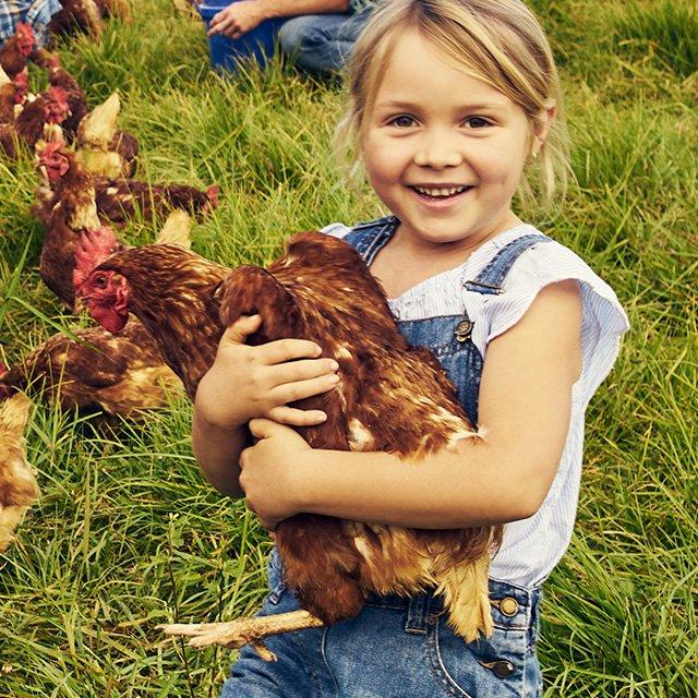 Farmer Boy Portfolio image
